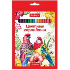 Набор цветных карандашей Птицы - 18 цветов - Заточенные