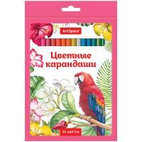 Набор цветных карандашей ArtSpace Птицы - 36 цветов - Заточенные